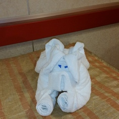 LOVE LOVE LOVE the towel animals