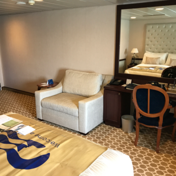 Oceanview Stateroom on Pacific Princess