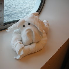 Love the towel animals on Carnival!