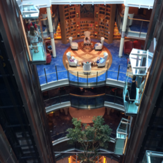 Library on Celebrity Equinox