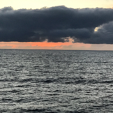 Rhapsody of the Seas Professional Photo