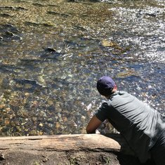 My husband trying to catch salmon with his bare hands!