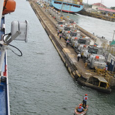 Mules lined up for Gatun Locks transit.