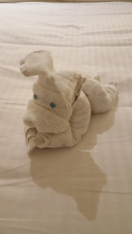 Towel Art - Norwegian Epic