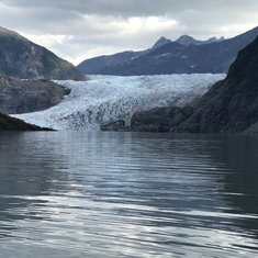 Glacier and Whale tour