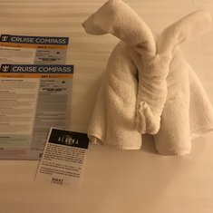 Towel animal on some nights guarding the ship compass