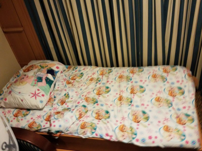 Deluxe Family Oceanview Stateroom Cabin Category 8d Disney Dream