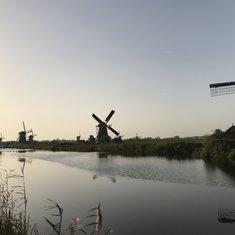 A few of the 19 windmills