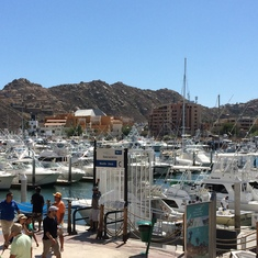 The harbor in Cabo