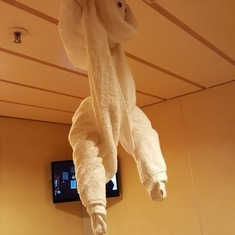 Monkey hanging from ceiling
