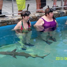 My sister and I swimming with sharks at Coral World