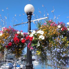 Victoria, British Columbia - Lamp post in Victoria