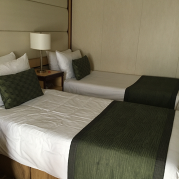 Deluxe Balcony Stateroom on Regal Princess