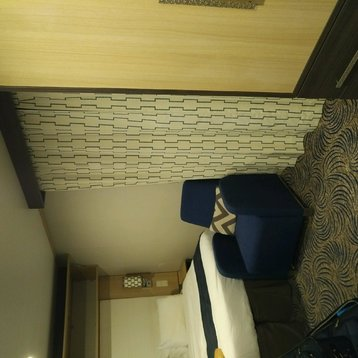 Interior Stateroom with Virtual Balcony on Anthem of the Seas