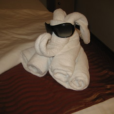 Great Towel Animals