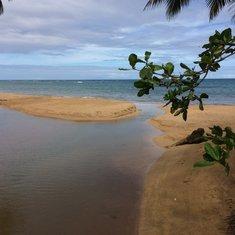 Golden sand beach on tour to Las Teranas from Samana