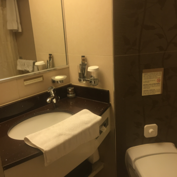Large Oceanview Stateroom on Rotterdam