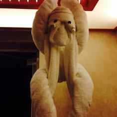 Towel monkey