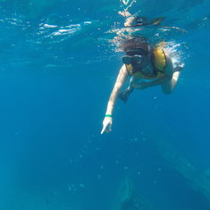 Snorkeling over a shipwreck