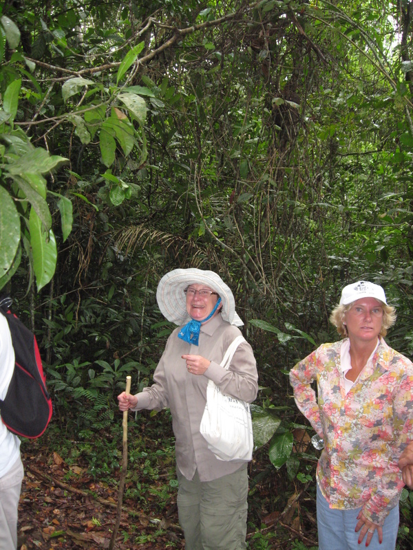 We took a jungle hike, at the 1000 mile up river point on the Amazon - Seven Seas Navigator