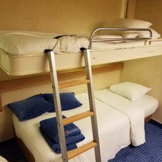 Wall bed/Sofa Bed
