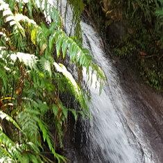 Ecrevisses Falls