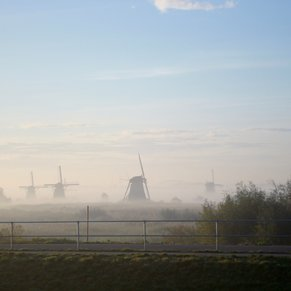 Early morning view of windmills in mist.