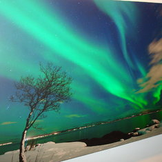 Picture of the Northern Lights as seen in Tromso