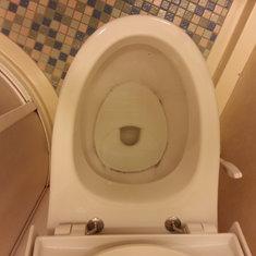 Filthy toilet...