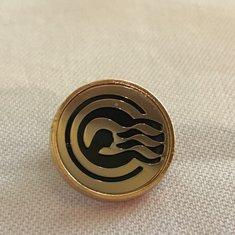 My new elite pin