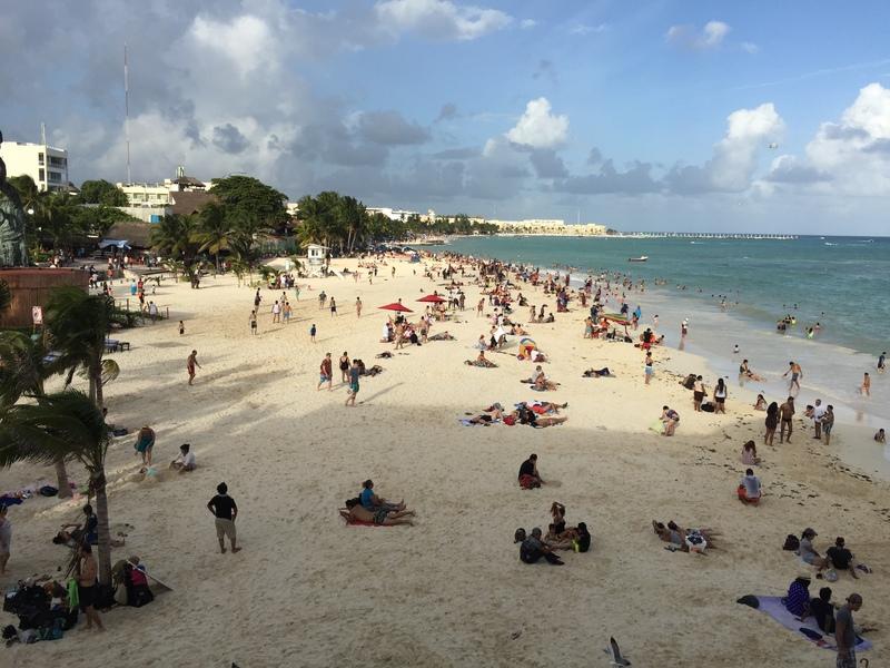 PLaya del Carmen beach - MSC Divina