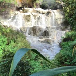 40 degree waterfall Tauranga New Zealand