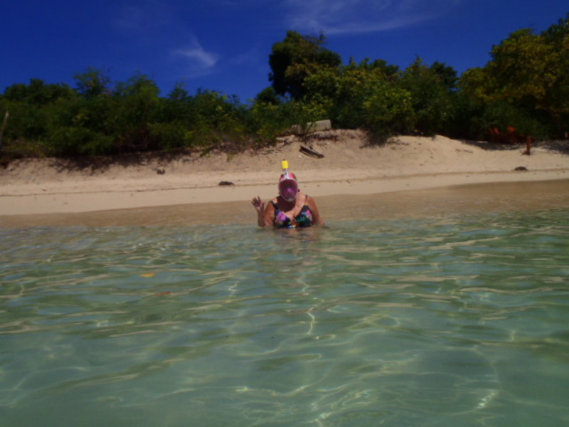 snorkeling - Oasis of the Seas