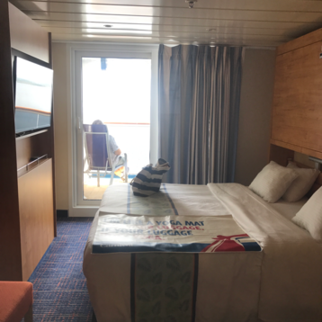 Oceanview Stateroom on Carnival Elation