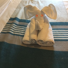 Towel Sculpture