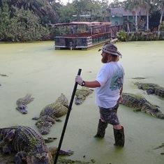 Alligator Farm in Florada