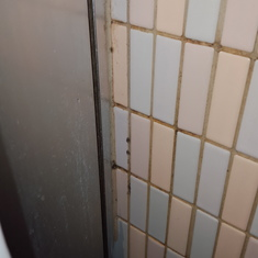 Mildew in shower