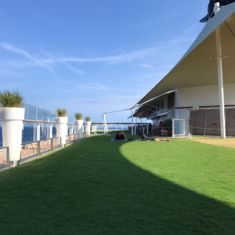 Patio on the Lawn on Celebrity Equinox