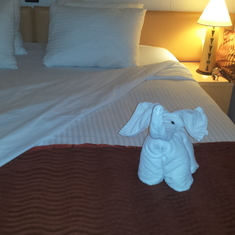 Love the towel animals