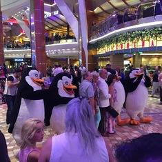 Penguins on Royal Promenade