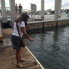 Feeding the fish at the 15th St. Fisheries at Lauderdale Marina