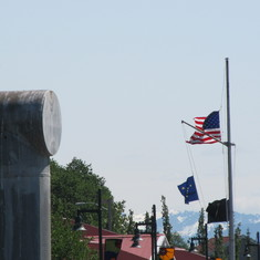 Juneau, Alaska - Bald Eagle Welcoming Cruise Passengers in Juneau