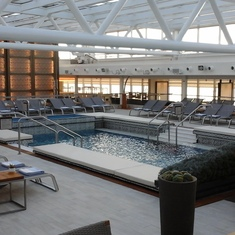 Indoor Pool and Spa with opening roof
