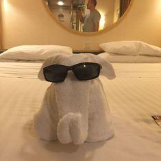 Elephant towel artistary