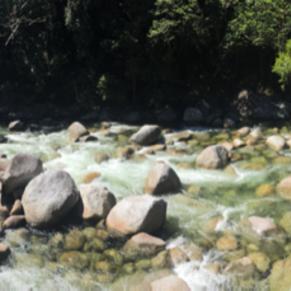 Simply beautiful Mossman Gorge