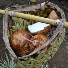 Apia, Samoa - Basket