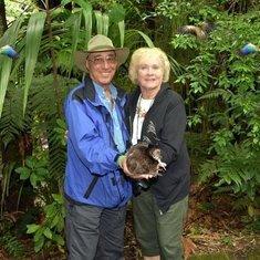 Rainbow Springs Nature Park (Kiwi)