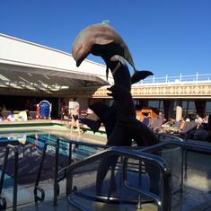 Lido Pool on Ryndam