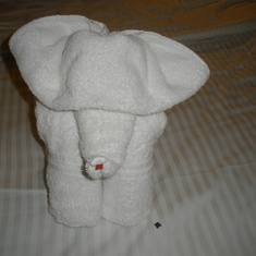 Towel Art by Room Steward
