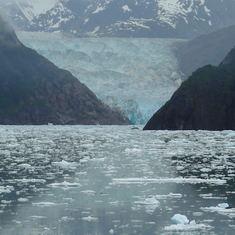 Cruise Sawyer Glacier - Sawyer glacier